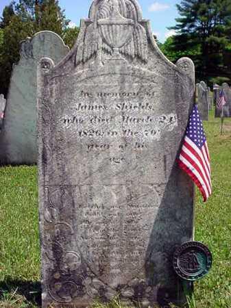 SHIELDS (RW), JAMES - Washington County, New York | JAMES SHIELDS (RW) - New York Gravestone Photos