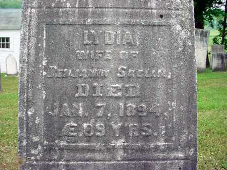 SKELLIE, LYDIA - Washington County, New York | LYDIA SKELLIE - New York Gravestone Photos