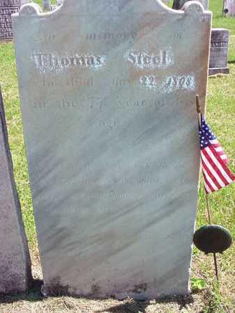 STEEL (RW), THOMAS - Washington County, New York | THOMAS STEEL (RW) - New York Gravestone Photos