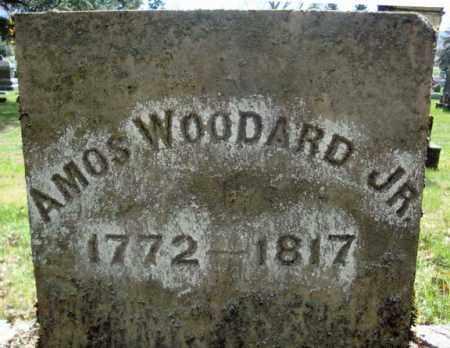 WOODARD, AMOS - Washington County, New York | AMOS WOODARD - New York Gravestone Photos