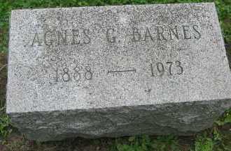 BARNES, AGNES GERTRUDE - Wyoming County, New York | AGNES GERTRUDE BARNES - New York Gravestone Photos