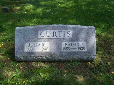 CAPIN CURTIS, JULIA M. - Wyoming County, New York | JULIA M. CAPIN CURTIS - New York Gravestone Photos