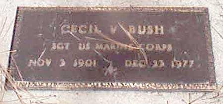 BUSH (SERV), CECIL W. - Baker County, Oregon | CECIL W. BUSH (SERV) - Oregon Gravestone Photos