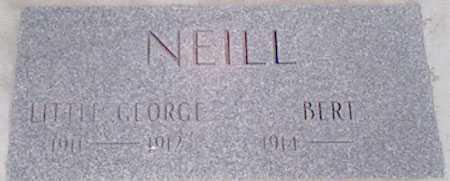 NEIL, BERT - Baker County, Oregon   BERT NEIL - Oregon Gravestone Photos
