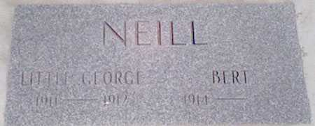 NEIL, BERT - Baker County, Oregon | BERT NEIL - Oregon Gravestone Photos