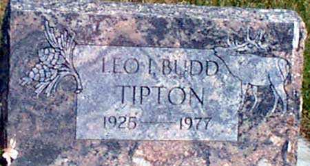 TIPTON, LEO I. (BUDD) - Baker County, Oregon | LEO I. (BUDD) TIPTON - Oregon Gravestone Photos