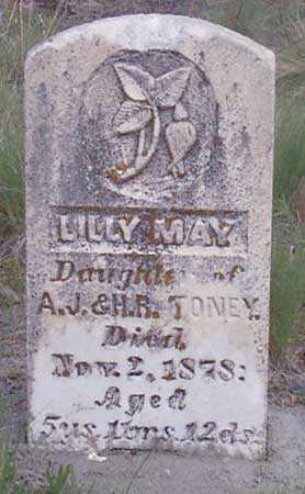 TONEY, LILLY MAY - Baker County, Oregon | LILLY MAY TONEY - Oregon Gravestone Photos