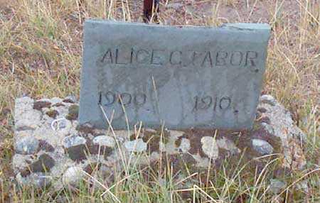 TABOR, ALICE C. - Grant County, Oregon | ALICE C. TABOR - Oregon Gravestone Photos