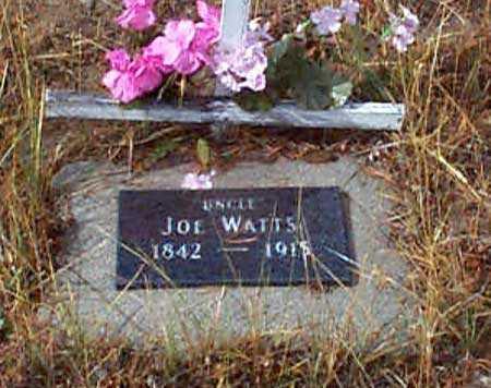 WATTS, JOE - Grant County, Oregon   JOE WATTS - Oregon Gravestone Photos