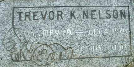 NELSON, TREVOR K. - Klamath County, Oregon | TREVOR K. NELSON - Oregon Gravestone Photos