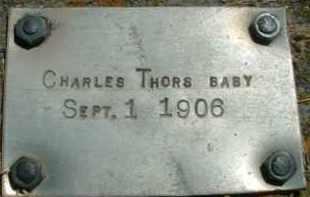 THORS, CHARLES - Klamath County, Oregon | CHARLES THORS - Oregon Gravestone Photos