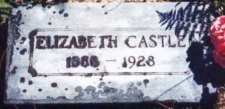 CASTLE, PARTHENIA ELIZABETH - Lane County, Oregon | PARTHENIA ELIZABETH CASTLE - Oregon Gravestone Photos