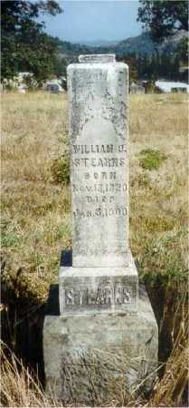 STEARNS, WILLIAM ORSON - Lane County, Oregon | WILLIAM ORSON STEARNS - Oregon Gravestone Photos