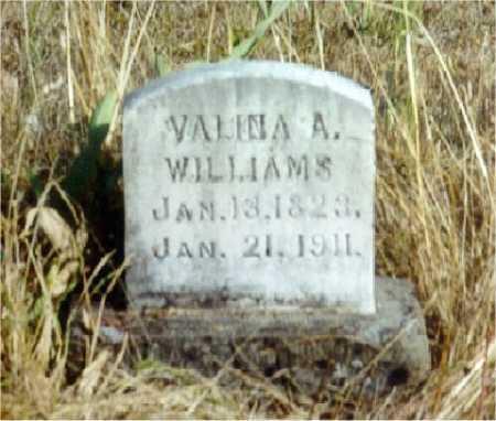 STEARNS WILLIAMS, VELINA ASENATH - Lane County, Oregon | VELINA ASENATH STEARNS WILLIAMS - Oregon Gravestone Photos
