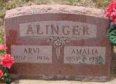 ALINGER, ANDREW ARVI - Lincoln County, Oregon | ANDREW ARVI ALINGER - Oregon Gravestone Photos