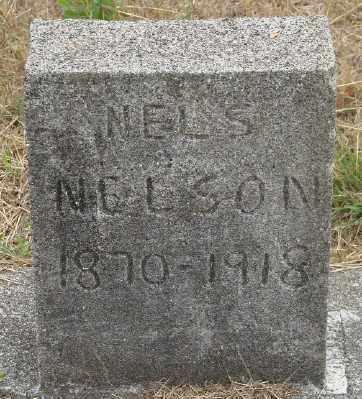 NELSON, NELS - Lincoln County, Oregon | NELS NELSON - Oregon Gravestone Photos
