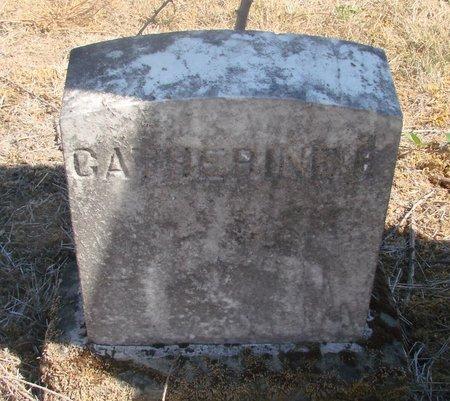MILLER, CATHERINE E - Linn County, Oregon | CATHERINE E MILLER - Oregon Gravestone Photos