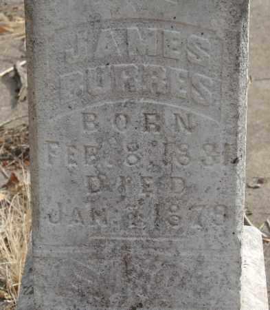 BURRES, JAMES - Linn County, Oregon | JAMES BURRES - Oregon Gravestone Photos