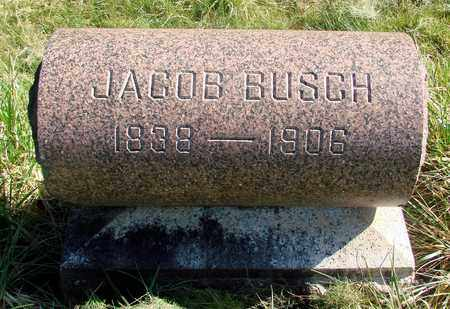 BUSCH, JACOB - Linn County, Oregon | JACOB BUSCH - Oregon Gravestone Photos