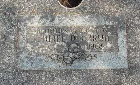 CARLIN, LAUREL D - Linn County, Oregon | LAUREL D CARLIN - Oregon Gravestone Photos