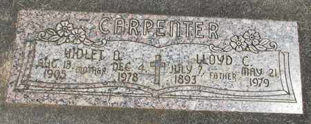CARPENTER, LLOYD C - Linn County, Oregon | LLOYD C CARPENTER - Oregon Gravestone Photos