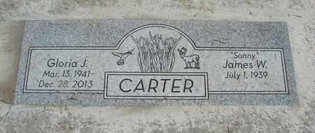 CARTER, JAMES W - Linn County, Oregon | JAMES W CARTER - Oregon Gravestone Photos