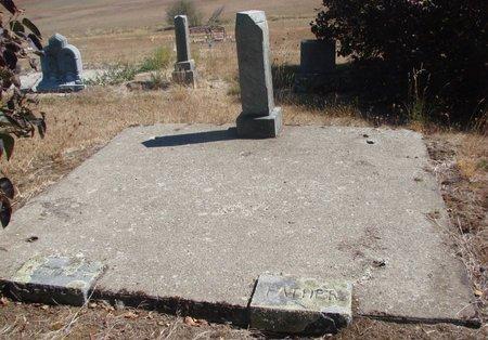 MILLER, ALICE - Linn County, Oregon | ALICE MILLER - Oregon Gravestone Photos