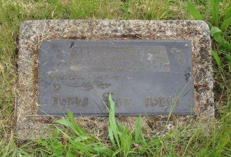 NEUSCHWANDER, SHERMAN LEE - Linn County, Oregon   SHERMAN LEE NEUSCHWANDER - Oregon Gravestone Photos