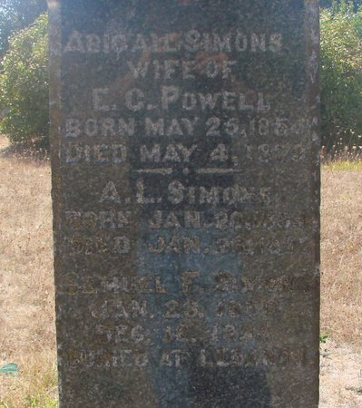 POWELL, ABIGAIL - Linn County, Oregon | ABIGAIL POWELL - Oregon Gravestone Photos