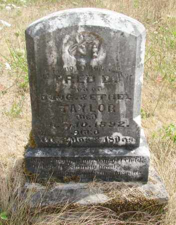 TAYLOR, FRED D - Linn County, Oregon   FRED D TAYLOR - Oregon Gravestone Photos