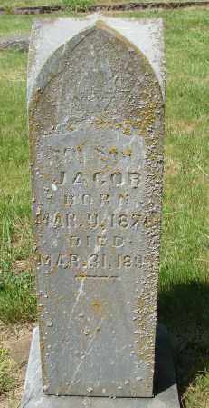 AAS, JACOB - Marion County, Oregon | JACOB AAS - Oregon Gravestone Photos