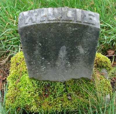 ADAIR, WILLIE MAX - Marion County, Oregon | WILLIE MAX ADAIR - Oregon Gravestone Photos