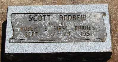 BARNES, SCOTT ANDREW - Marion County, Oregon | SCOTT ANDREW BARNES - Oregon Gravestone Photos