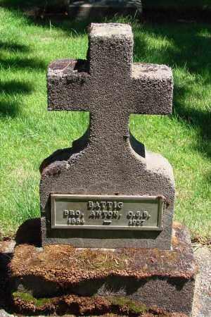 BATTIG, ANTON - Marion County, Oregon   ANTON BATTIG - Oregon Gravestone Photos