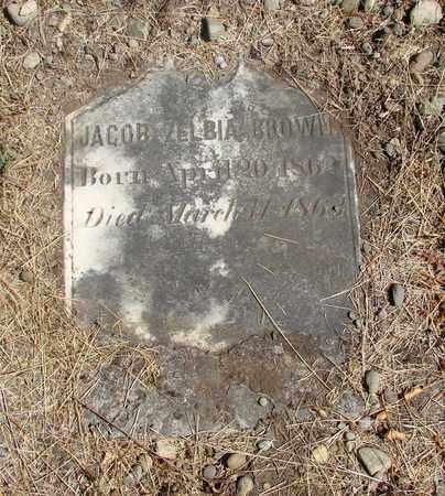 BROWN, JACOB ZELBIA - Marion County, Oregon | JACOB ZELBIA BROWN - Oregon Gravestone Photos