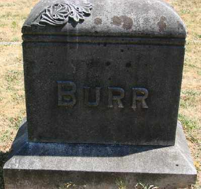 BURR, MONUMENT - Marion County, Oregon   MONUMENT BURR - Oregon Gravestone Photos