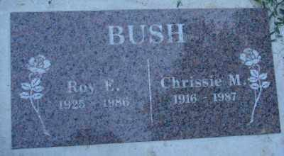 BUSH, CHRISSIE - Marion County, Oregon | CHRISSIE BUSH - Oregon Gravestone Photos