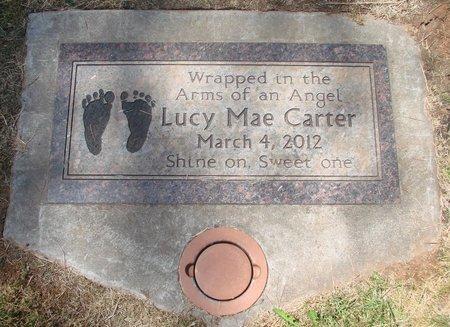 CARTER, LUCY MAE - Marion County, Oregon   LUCY MAE CARTER - Oregon Gravestone Photos