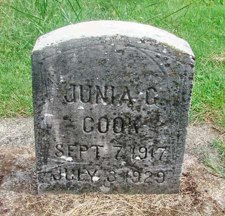 COOK, JUNIA GERALDINE - Marion County, Oregon | JUNIA GERALDINE COOK - Oregon Gravestone Photos
