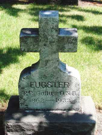 EUGSTER, GALLUS - Marion County, Oregon | GALLUS EUGSTER - Oregon Gravestone Photos
