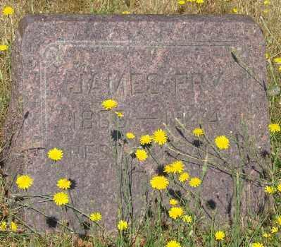 FRY, JAMES - Marion County, Oregon | JAMES FRY - Oregon Gravestone Photos