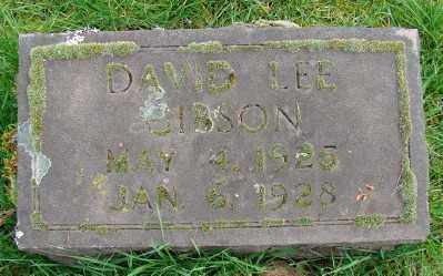 GIBSON, DAVID LEE - Marion County, Oregon | DAVID LEE GIBSON - Oregon Gravestone Photos