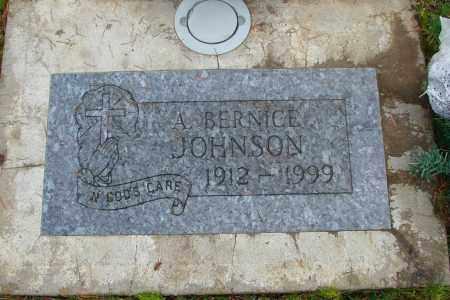 JOHNSON, A BERNICE - Marion County, Oregon | A BERNICE JOHNSON - Oregon Gravestone Photos