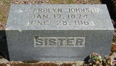 JOHNSON, AMANDA CAROLYN - Marion County, Oregon | AMANDA CAROLYN JOHNSON - Oregon Gravestone Photos
