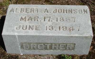 JOHNSON, ALBERT A - Marion County, Oregon | ALBERT A JOHNSON - Oregon Gravestone Photos