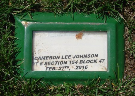 JOHNSON, CAMERON LEE - Marion County, Oregon | CAMERON LEE JOHNSON - Oregon Gravestone Photos