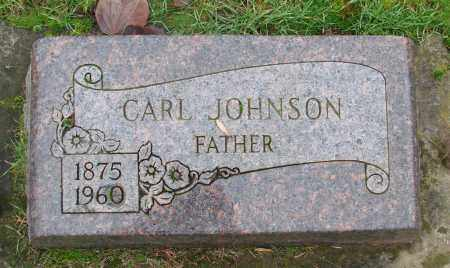 JOHNSON, CARL - Marion County, Oregon | CARL JOHNSON - Oregon Gravestone Photos