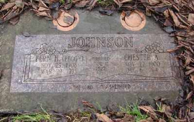 JOHNSON, FERN H - Marion County, Oregon | FERN H JOHNSON - Oregon Gravestone Photos