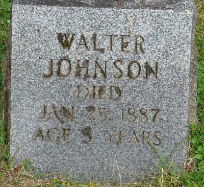JOHNSON, WALTER - Marion County, Oregon   WALTER JOHNSON - Oregon Gravestone Photos