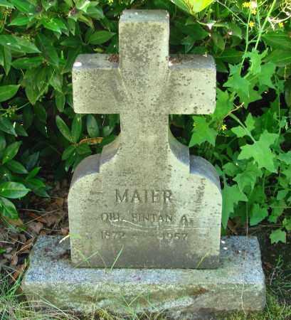 MAIER, FINTAN A - Marion County, Oregon   FINTAN A MAIER - Oregon Gravestone Photos